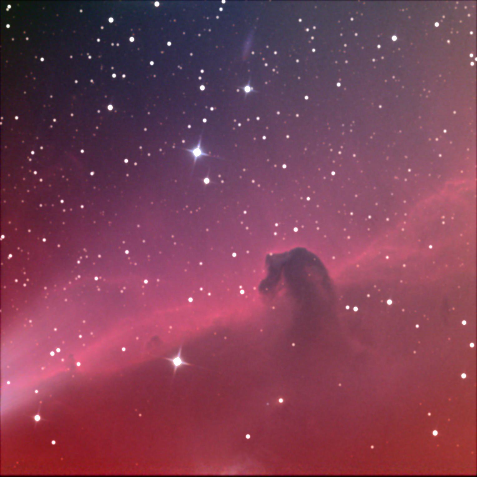 Horsehead Nebula (2/2013 Bay School field trip)